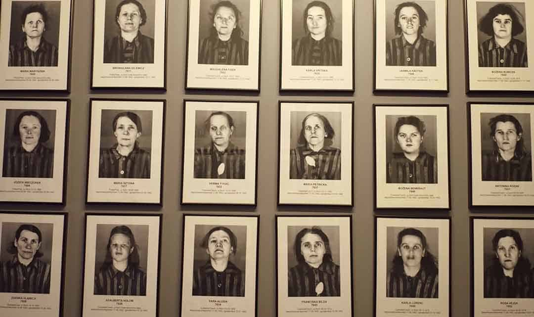 Image of portraits of some of the female victims of Auschwitz