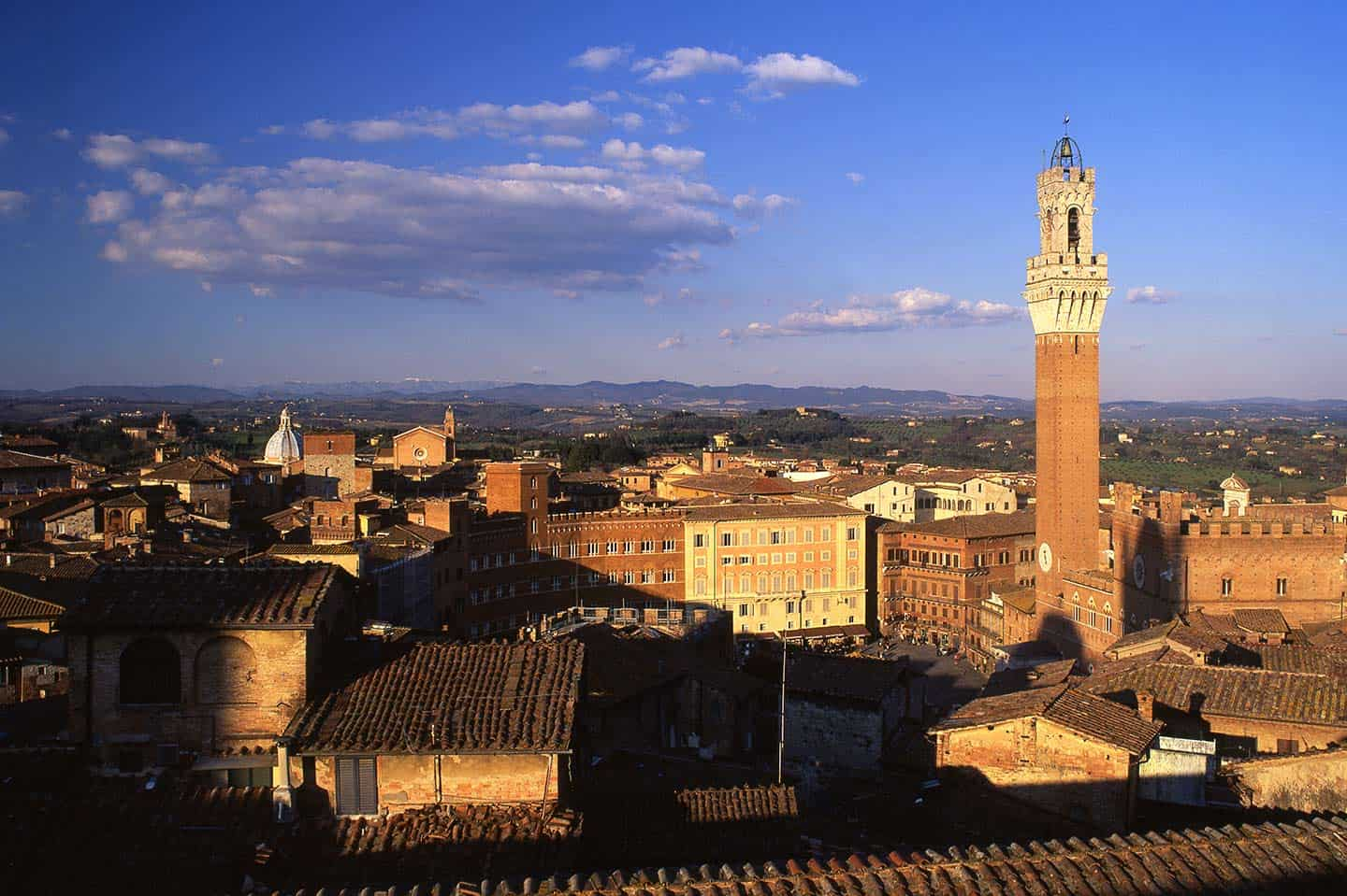 Image of Piazza del Campo and Torre del Mangia Siena Tuscany