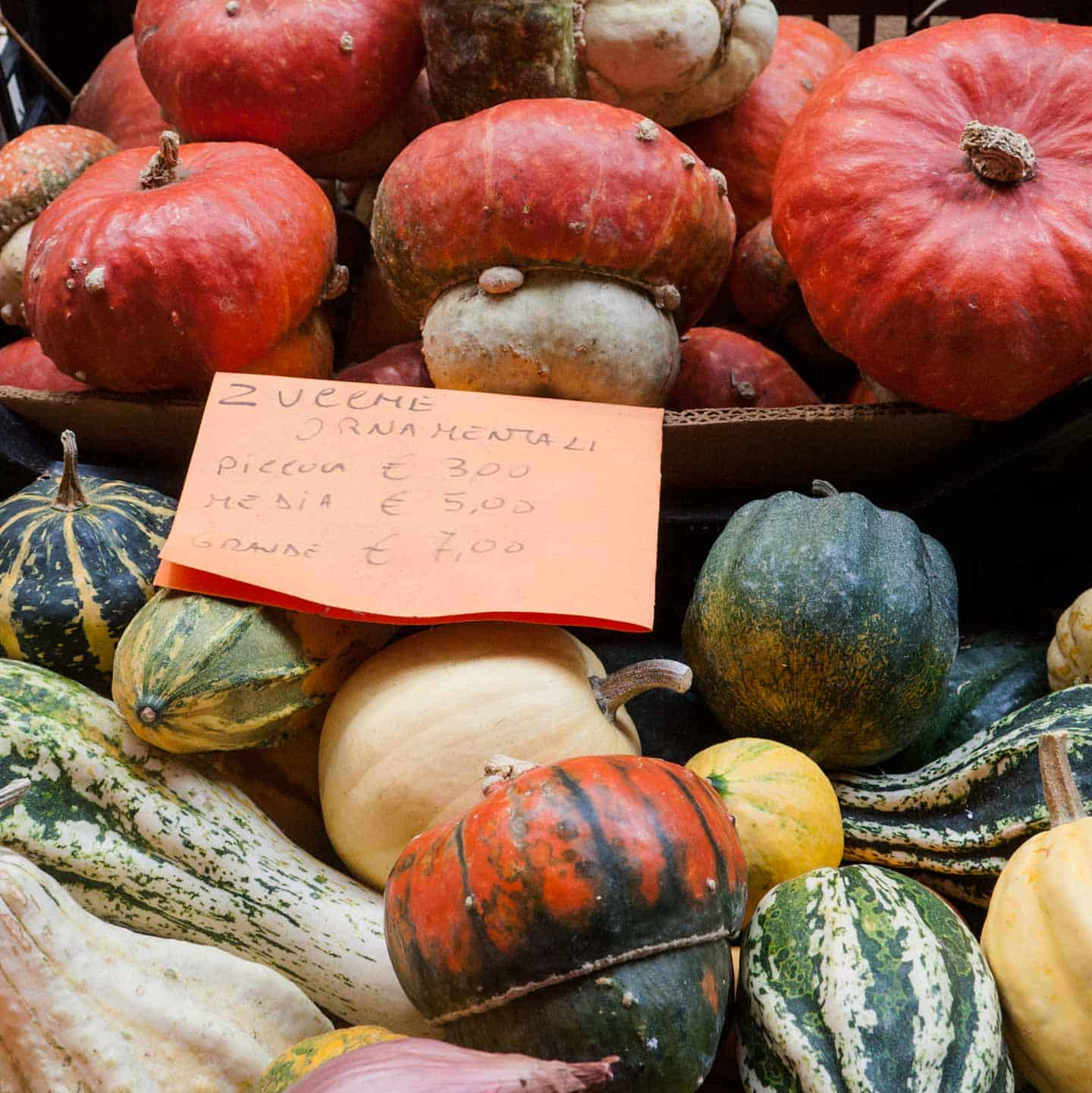 Image of varieties of pumpkin and squash in a Bologna market