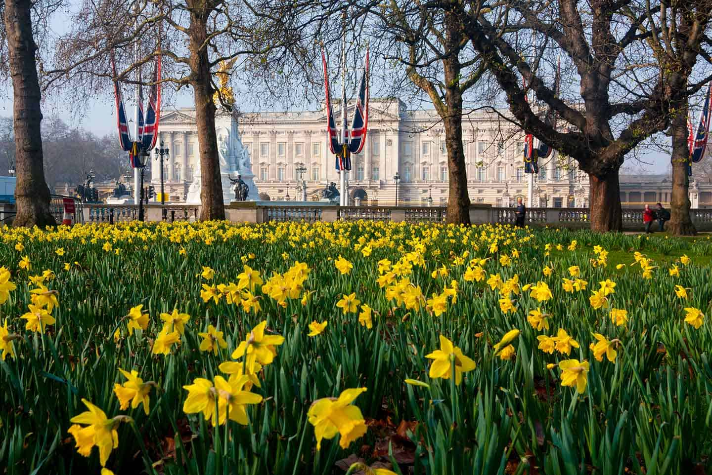Things to do in Central London Buckingham Palace in spring