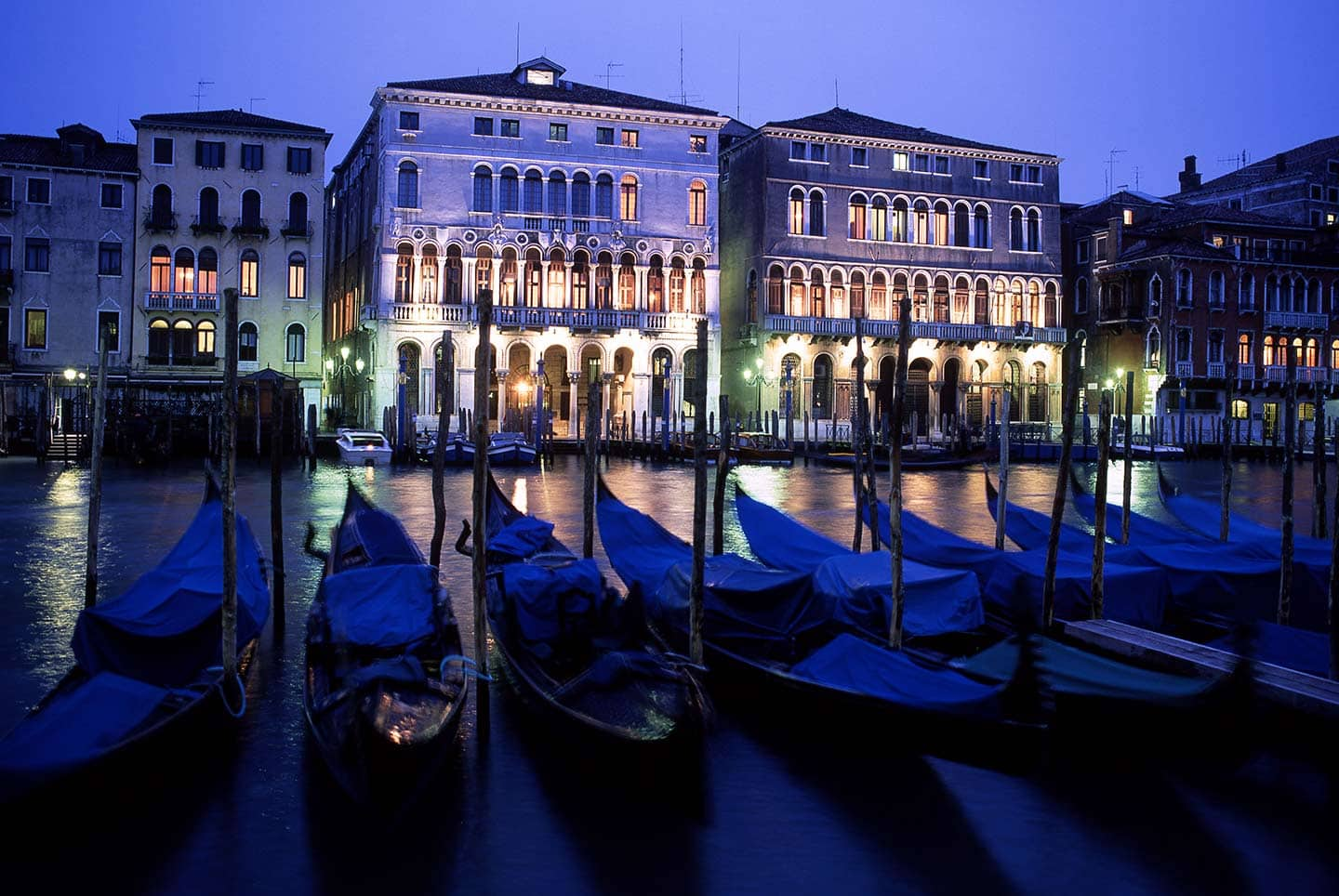 Image of gondolas on the Grand Canal a highlight of any Venice day tour