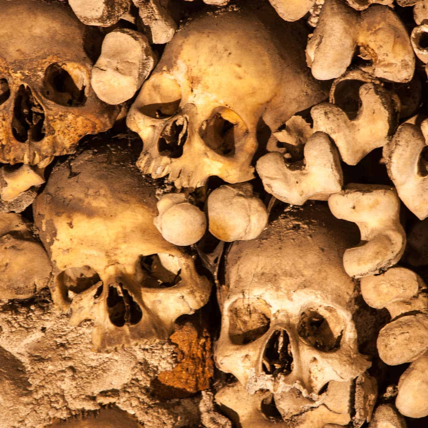 Image of skulls and bones in the chapel