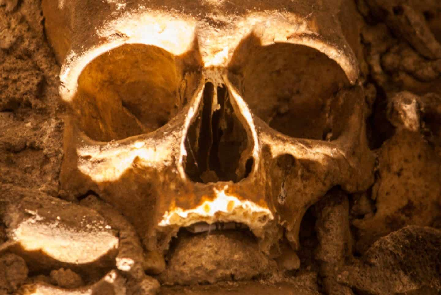 Image of skull in the Evora Chapel Of Bones