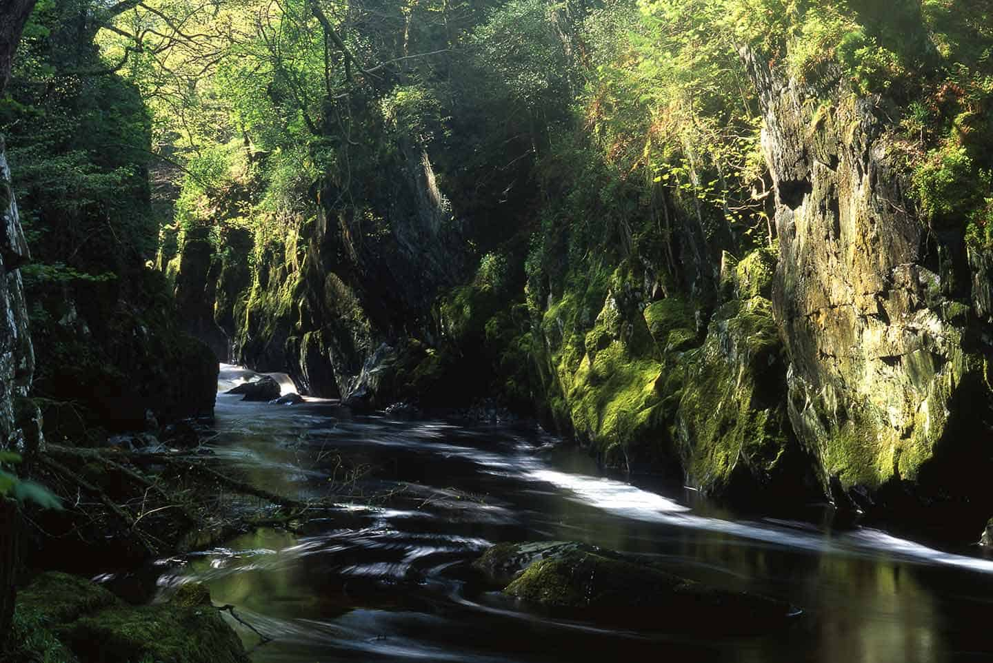 Things to do around Snowdonia Image of Fairy Glen near Betws-y-Coed