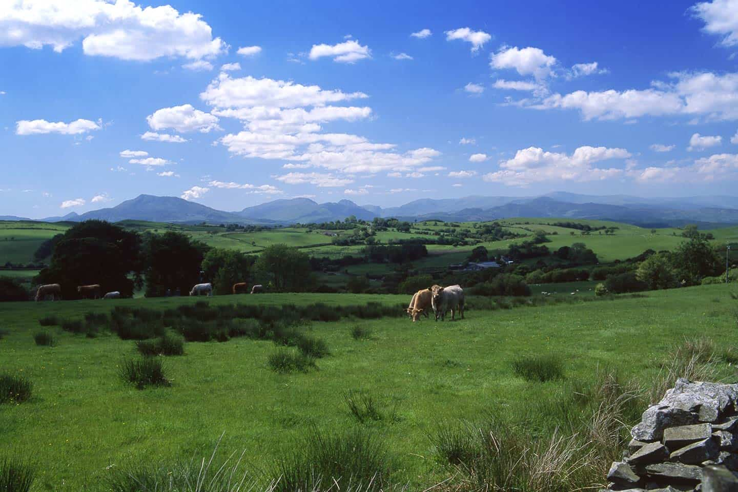 Image of the Snowdonia mountains from the Nebo scenic drive