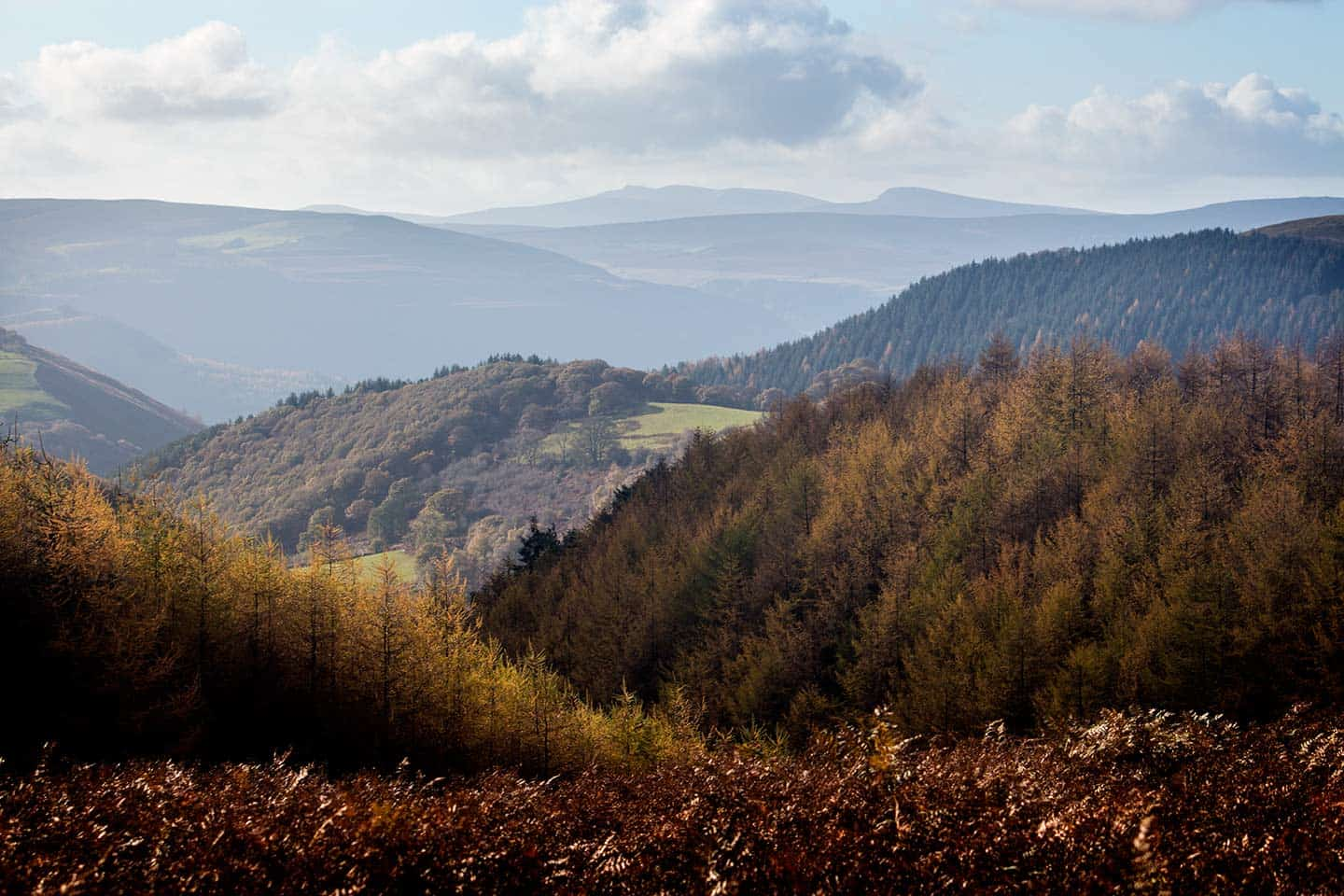 Image of the view from World's End, on the Offa's Dyke Path