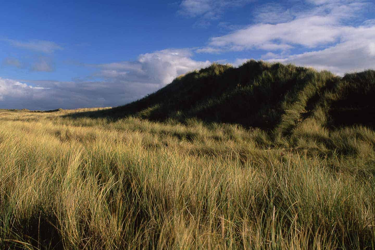 Image of Aberffraw dunes, Anglesey North Wales