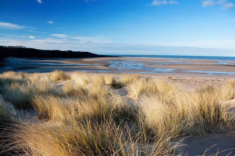 Image of Lligwy Beach, Anglesey