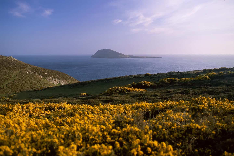 Image of Bardsey Island, Llŷn Peninsula, North Wales