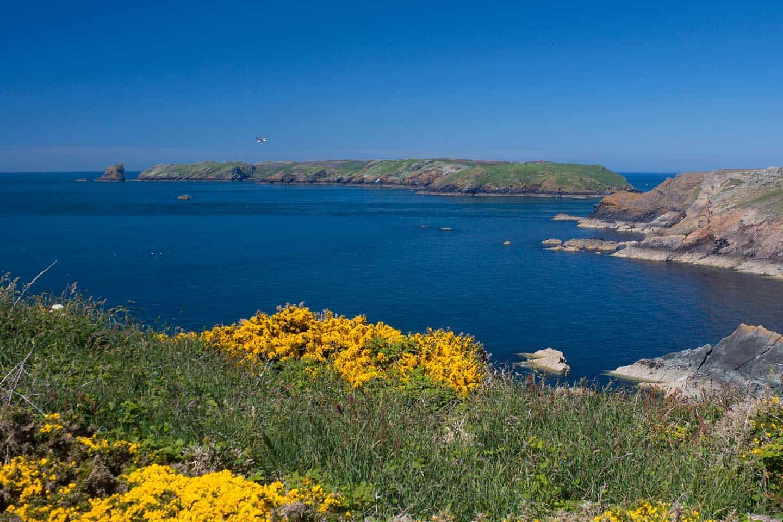 Image of Skomer island, Pembrokeshire, Wales