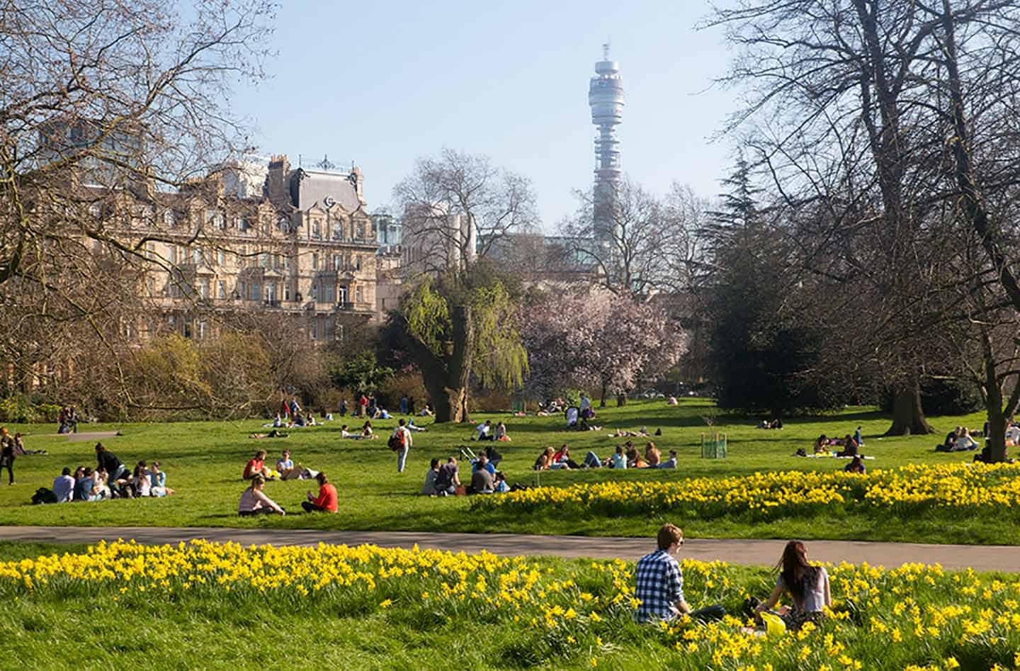 Image of the BT Tower from Regent's Park London