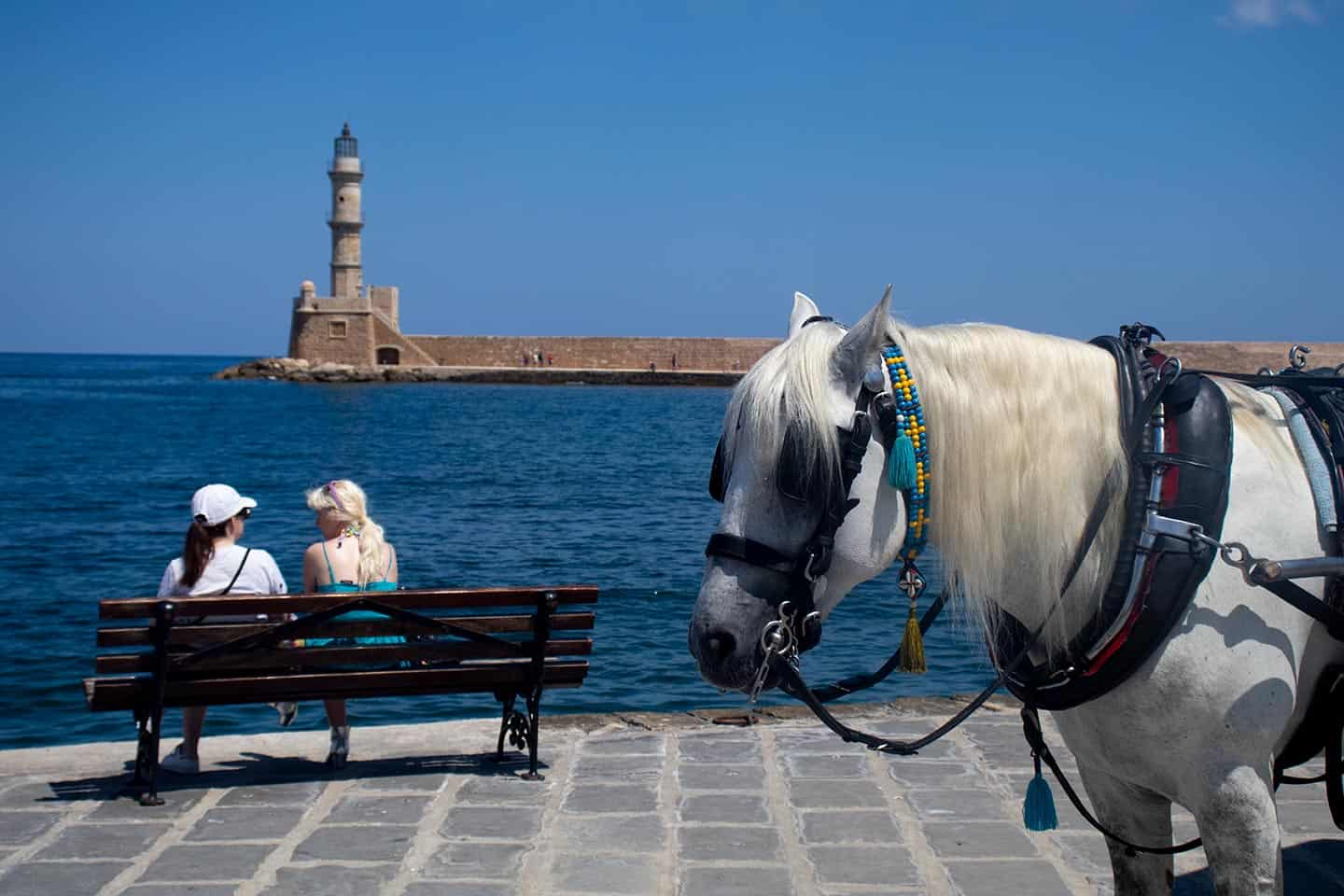 Image of a horse at Chania harbour
