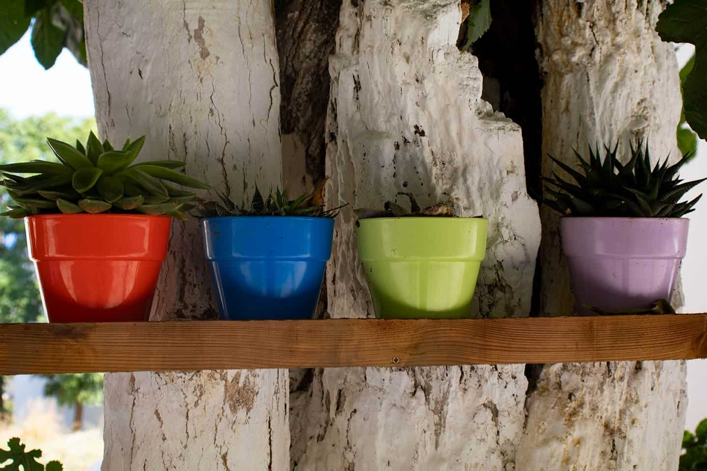 Image of colorful plant pots in Panormos Crete